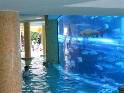 shark tank picture of golden nugget hotel las vegas