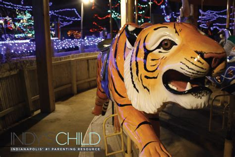 lights at the zoo indianapolis get into the spirit at at the