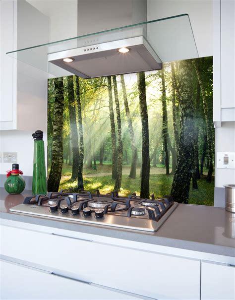 forest  suns rays printed glass hob splashback
