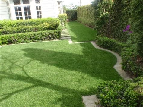 hydroseeding contractors auckland grass seeding services