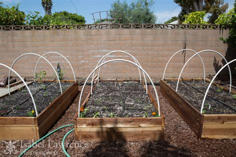 Vegetable Garden Tips For Healthy Foods Vegetable Garden Watering Systems