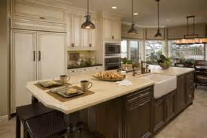 nice Kitchen Decorating Ideas Pictures #2: Harneyer_kitchen2-ret.jpg