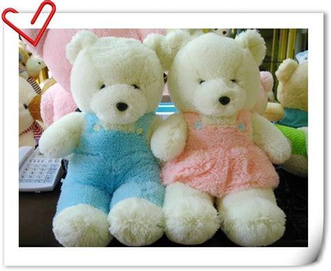 wallpaper of couple teddy bear cute teddy bear couple pictures wallpaper sportstle