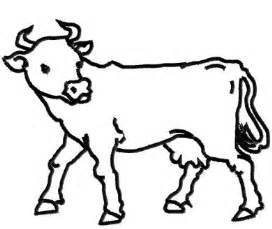 Cow Drawing Outline by Cow Outline Clipart Best Cliparts Co