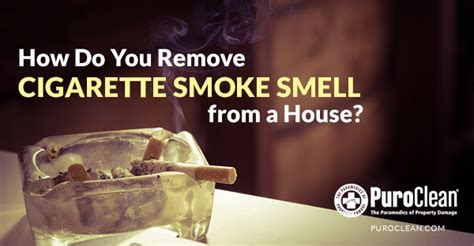 Removing Cigarette Smoke Smell From House by How Do You Remove Cigarette Smoke Smell From A House