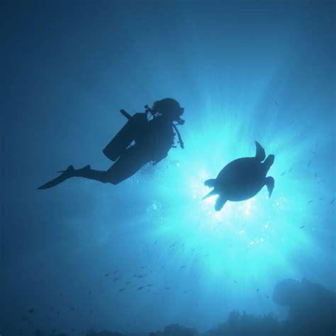 dive mabul dive sipadan seaventures dive rig mabul borneo malaysia