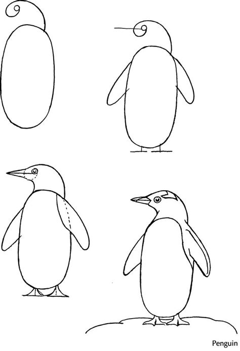 how to draw dover how to draw welcome to dover publications