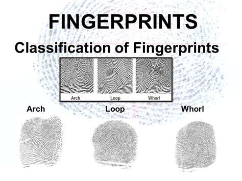 pattern classification of fingerprints fingerprints ppt download