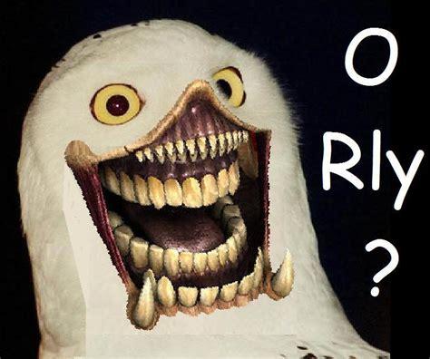 O Really Meme - o rly owl meme memes