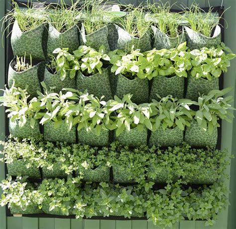 Make Your Own Vertical Garden Make Your Own Vertical Garden With Montgomery Adelaide