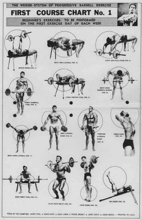 weight bench workout chart the weider system of progressive barbell exercise