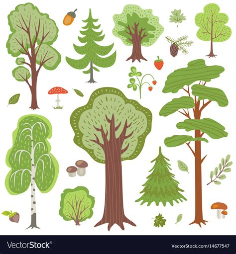 woodland forest plants and trees forest trees plants and mushrooms other woodland vector image