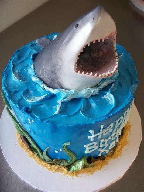 shark cake pinterest shark cake shark party  birthday