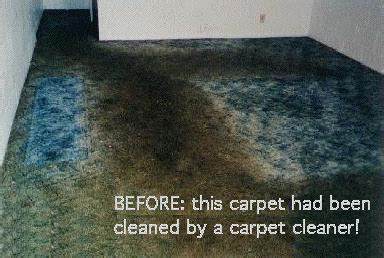 How To Dye Rugs by Carpet Dyeing And Color Restoration Services Dyeing Expert