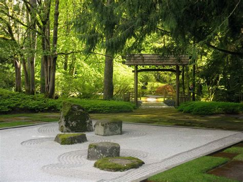 giardini per piante per giardino zen come sceglierle