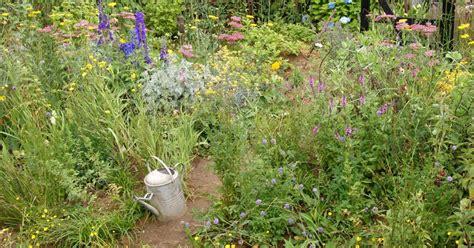 naturgarten gestalten naturgarten pflanzen gestaltung und ideen mein