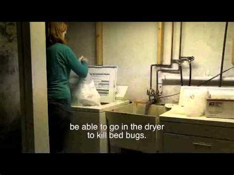 does washing clothes kill bed bugs laundering items to kill bed bugs let s beat the bed bug
