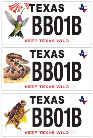 texas boating license year tpwd wildlife diversity program conservation license