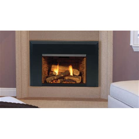 Fireplace Gas Direct Vent by Majestic Fireplace Topaz 30 Insert Direct Vent Gas Fireplace Reviews Wayfair