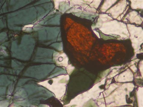 rutile thin section geology word of the week r is for rutile georneys agu