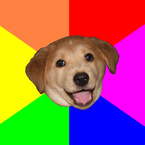 Gay Dog Meme - dogs know your meme