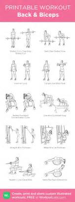 best 25 back and biceps ideas on