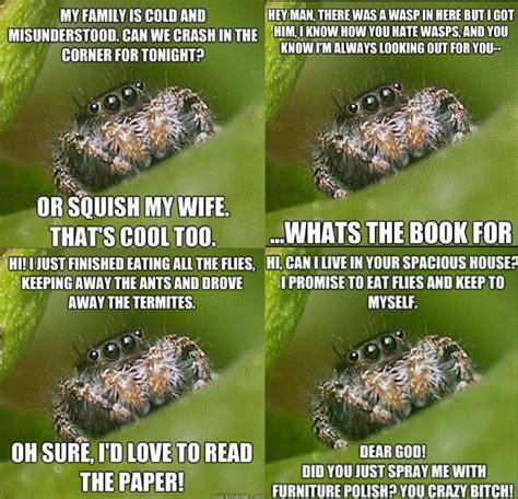 Misunderstood Spider Meme 16 Pics - misunderstood spider meme
