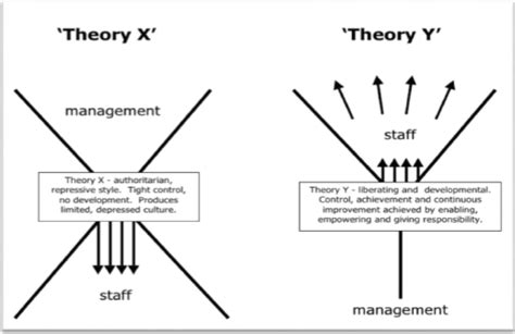 x and y individual and behavior theory x and theory y