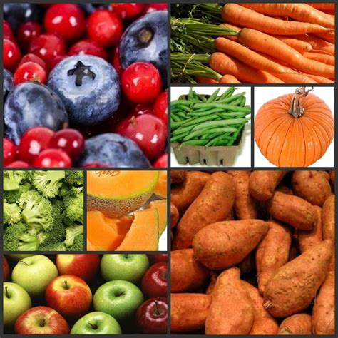 fruits and veggies for dogs a list of which vegetables are for your spinach sugar beet and