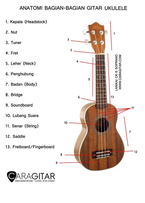 tutorial gitar ukulele anatomi bagian bagian ukulele tutorial gitar lengkap