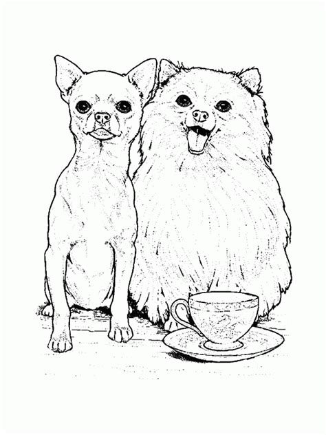 pomeranian coloring book coloring pages