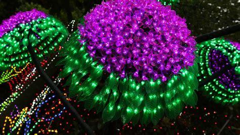 lights at valley gardens lights spectacular at valley gardens