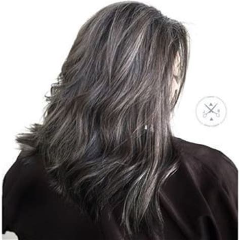hair highlights for salt and pepper hair pinterest the world s catalog of ideas