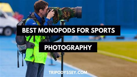 best monopod for sports photography top 5 best monopods for sports photography tripodyssey