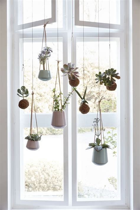 Low Maintenance Windows Decor 25 Best Ideas About Indoor Hanging Plants On Hanging Plants Hanging Plant And