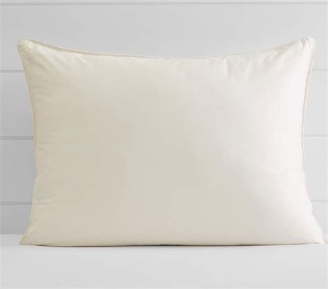 Pottery Barn Pillow Insert by Organic Botanical Pillow Insert Pottery Barn