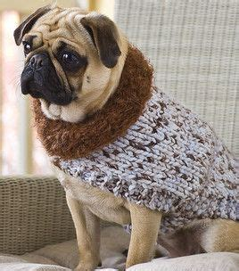 pug jumper knitting pattern best 25 knitting patterns free ideas on sweater pattern knit