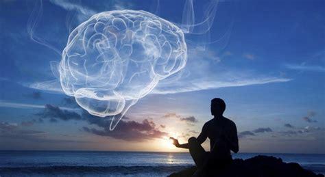 brainharvardmeditation xjpg