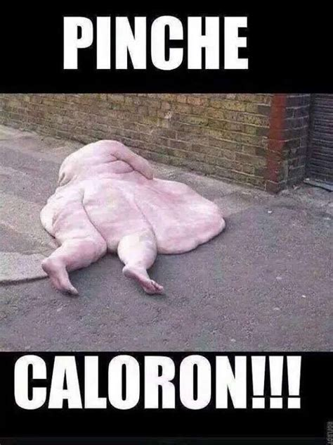 imagenes graciosas sobre el calor los memes por la calor chilango