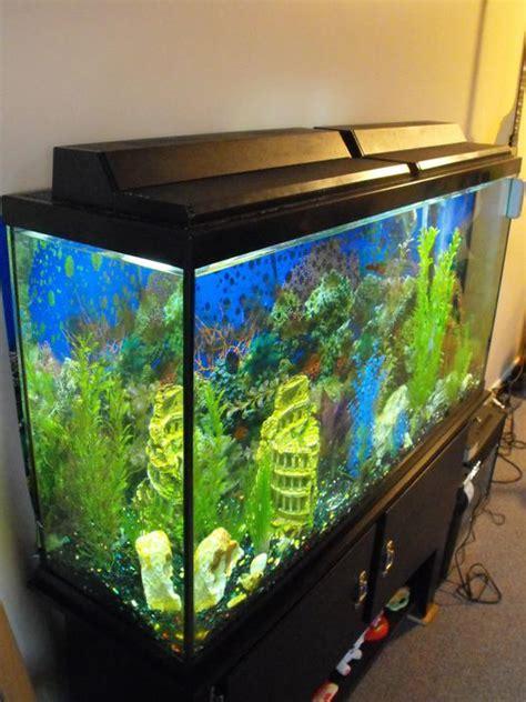 membuat filter aerator aquarium 60 gallon 4 x1 x1 5 aquarium stand fluval filter