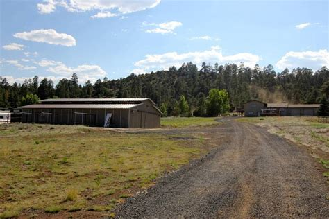 Premium Flagstaff Horse Property in the Pines For Sale Flagstaff Horse Properties