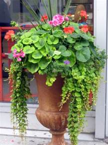 Potted Garden Ideas 10 Spectacular Container Gardening Ideas