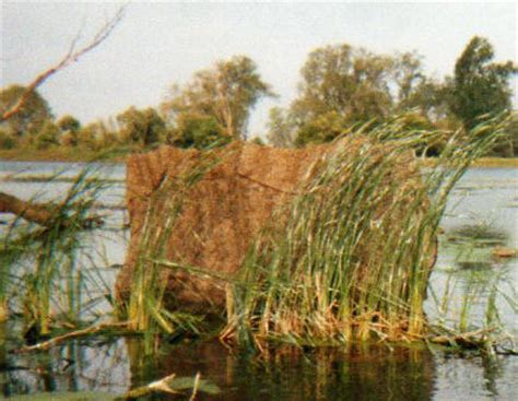enclosed duck boat blind camera and wildlife photography pontoon boats