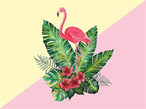 Paint Design by Flamingo With Botany Tropic By Planolla Dribbble