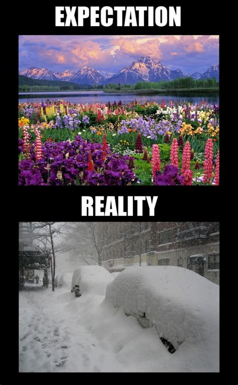 First Day Of Spring Meme - first day of spring meme guy