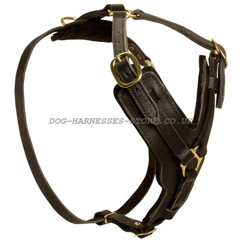 leather harness for dogs large leather harness for great dane 163 72 05