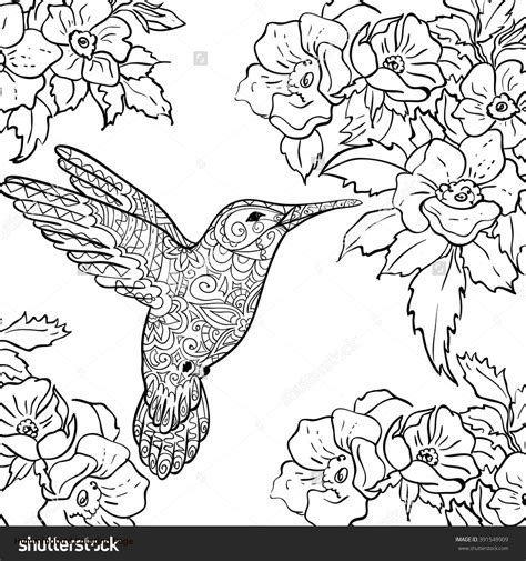 coloring book hummingbird hummingbird coloring page freecolorngpages co