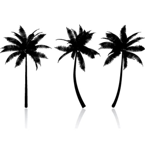 palm results palm tree graphic image search results clipart best clipart best