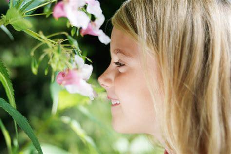 profumi di fiori quel meraviglioso profumo di fiori l eco di san gabriele
