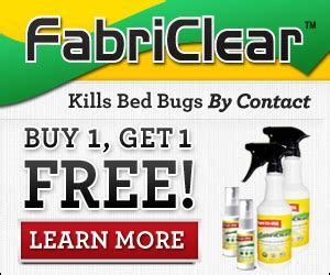 does cold weather kill bed bugs bed bugs and cold weather